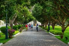Wide, tree-lined footpath on the grounds of Bang Pa-In palace near Ayutthaya, Thailand (UweBKK (α 77 on )) Tags: ayutthaya thailand southeast asia sony alpha 77 slt dslr bangpain bang pain royal palace path walk footpath wide tree line grass green outdoors