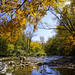 Wissahickon Valley (Ben_Cheng) Tags: