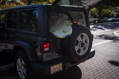 Princeton, NJ (T Tonogawa) Tags: leica m10 m10d nj princeton summilux