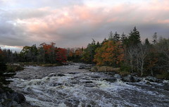 Rapids on the Musquodoboit River (Lawrence Sibley) Tags: river rapids autumn