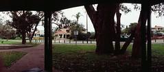 Perfekt, Velvia, Home 0007 (brett.m.johnson) Tags: 100iso camera claremont e6 fujichrome home horizonperfekt mtpleasant panoramic perth rossmoyne september2019 shelley slidefilmcameratest velvia westernaustralia