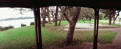 Perfekt, Velvia, Home 0010 (brett.m.johnson) Tags: 100iso camera claremont e6 fujichrome home horizonperfekt mtpleasant panoramic perth rossmoyne september2019 shelley slidefilmcameratest velvia westernaustralia