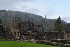 Tintern Abbey ruins with a misty backdrop (Majorshots) Tags: tintern monmouthshire tinternabbey