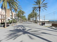Badalona 2019 (José D...) Tags: badalona catalunya barcelona spain boulevard zomer summer l'estiu elverano
