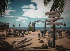 The Venue (RebylFaith) Tags: second life sl avatar virtual vr wedding love beach seaside venue sea water waterfront driftwood marry seashell blue
