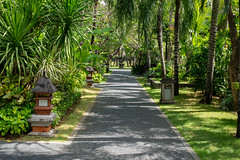 Pathway through the landscaped gardens of a tropical resort in Bali Indonesia (stewart.watsonnz) Tags: park garden grass tree plant path outdoors nature green summer walkway sidewalk trail landscape resort vegetation outdoor leaf arbour botanicalgarden property palm porch wood naturallandscape architecture naturalenvironment noperson botany street patio walk sitting flagstone flower area footpath naturereserve flora tropical palmtree red pergola pavement estate
