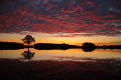 IMG_9676 (geraldtourniaire) Tags: sonnenaufgang franken mittelfranken 24105l 6d eos6d sunset spiegelung landschaft licht l ef