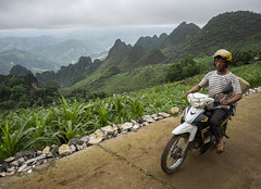 Ha Giang 14 (arsamie) Tags: hagiang vietnam asia south east mounatians hills north motorbike street man riding elephant grass panorama horizon far china border epic landscape