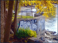Lakeside Graffiti (Explore #63, Oct. 20, 2019) ... (Irene, Montreal, QC) Tags: lakeshore lakestlouis lacstlouis water waterscenes trees treesilhouettes treebranches fall fallleaves fallscenes fallfoliage rails railings rocks treetrunks shoreline beach pebblebeach graffiti lakesidegraffiti allgraffiti art allart outdoorart artstyles wallart