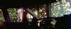 Perfekt, Velvia, Home 0005 (brett.m.johnson) Tags: 100iso camera claremont e6 fujichrome home horizonperfekt mtpleasant panoramic perth rossmoyne september2019 shelley slidefilmcameratest velvia westernaustralia