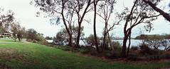 Perfekt, Velvia, Home 0008 (brett.m.johnson) Tags: 100iso camera claremont e6 fujichrome home horizonperfekt mtpleasant panoramic perth rossmoyne september2019 shelley slidefilmcameratest velvia westernaustralia