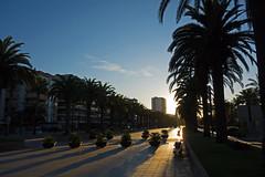 morning light - Passeig de Jaume I - Salou, Tarragona, Catalonia, Spain - Oct 2019 (Dis da fi we) Tags: morning light passeig jaume i salou tarragona catalonia spain promenade