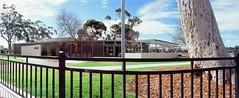 Perfekt, Velvia, Home 0003 (brett.m.johnson) Tags: 100iso camera claremont e6 fujichrome home horizonperfekt mtpleasant panoramic perth rossmoyne september2019 shelley slidefilmcameratest velvia westernaustralia