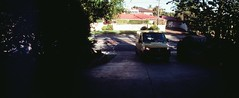 Perfekt, Velvia, Home 0011 (brett.m.johnson) Tags: 100iso camera claremont e6 fujichrome home horizonperfekt mtpleasant panoramic perth rossmoyne september2019 shelley slidefilmcameratest velvia westernaustralia