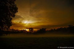 Morgenstund hat Gold .... (günter mengedoth) Tags: hdpentaxda1685mmf3556eddcwr hd pentaxda 1685mm f3556 ed dc wr pentax pentaxk3ii nature natur landschaft sonnenaufgang nebel wiese baum bäume himmel wolken