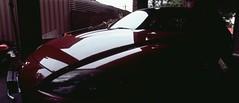 Perfekt, Velvia, Home 0016 (brett.m.johnson) Tags: 100iso camera claremont e6 fujichrome home horizonperfekt mtpleasant panoramic perth rossmoyne september2019 shelley slidefilmcameratest velvia westernaustralia