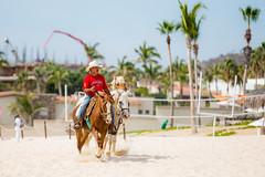 Mexican Cowboy (Thomas Hawk) Tags: baja bajacalifornia cabo cabosanlucas loscabos mexico beach cowboy horse vacation fav10