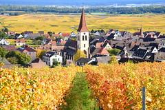 Ammerschwihr (Alsace, F) (pietro68bleu) Tags: alsace hautrhin village vignoblr vignes clocher églisestmartin automne