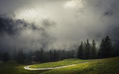 Covered with Clouds (Netsrak) Tags: alpen baum bäume europa kleinwalsertal landschaft natur nebel schnee wald fog mist snow trees