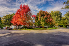 Autumn Color on Display in Morris (kendoman26) Tags: hss happyslidersunday hdr nikhdrefexpro2 morrisillinois autumn autumncolors fall fallcolors sonyalpha sonyphotographing sonya6000 selp1650