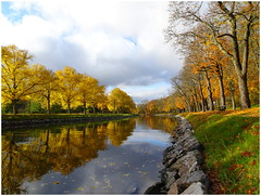 Falling Away... (crush777roxx) Tags: crush777roxx crush 20191018 2019 october 18th compact camera sony hx90v sweden stockholm scandinavia nordic landscape nature autumn fall afternoon glow djurgården canal painted reflections water leaves falling color blue sky clouds natur landskap jonquille paysage bonne année 性质 景观 自然 風景 природа пейзаж красота 31821198 share kindness sharethekindness autumncolors fallcolors leaveschanging waterreflection ontherocks snickerdoodle😊 trulyawesome thankyou stockholmsweden compactcamera sonyhx90v