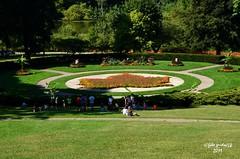 High Park (3) (guidoa58) Tags: guidoa58 viaggio canada ontario toronto metropoli natura parco albero foglia acero mapleleaf park prato giardino
