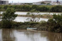 Flooding Edogawa river a week after Typhoon Hagibis (Matthias Harbers) Tags: typhoon 19 flooding river edogawa chiba nagareyama water dirt trash photoshop elements topaz dxo hagibis canonpowershotg3x