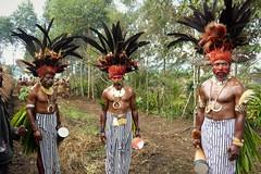 (gailhampshire) Tags: papua new guinea