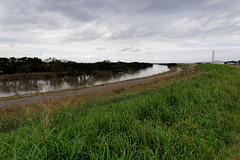 Flooding Edogawa river a week after Typhoon Hagibis (Matthias Harbers) Tags: water trash river flooding dirt chiba 19 typhoon edogawa nagareyama photoshop elements dxo topaz hagibis canonpowershotg3x