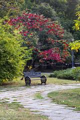 Silence in the park (Dumby) Tags: landscape bucurești românia sector1 herăstrău park nature bench colors autumn fall canoneos40d m42