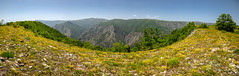 Valley of Lake Sveta Petka (Charaxes14) Tags: lighting shadow green beautiful wonderful amazing beauty nature bokeh fantastic sunny summer landscape view scenery wide widefield sky blue mountains mountainside hill hills pine forest meadow field mountain trail north macedonia