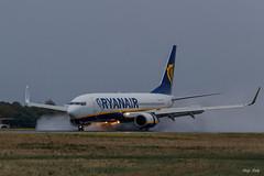 Atterrissage dans la grisaille , sur piste mouillée (luciole17) Tags: avion attérrissage boeing 737 canon 1dx mark2 100400l piste