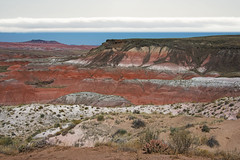 Painted glory (My Americana) Tags: painted desert petrifiedforestnationalpark nationalpark petrifiedforest np scenic landscape