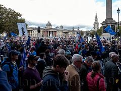 Peoples Vote 5256 (stagedoor) Tags: london peoplesvote demonstration eu trafalgarsquare omdem1mkii olympus copyright city glc greaterlondon londonboroughofwestminster capital england uk