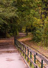 Parc de la Tête d'or, Lyon (Laetitia.p_lyon) Tags: fujifilmxt2 lyon parcdelatêtedor