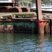 a rusted barge