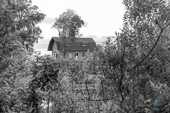 2ª Caminhada da Lavanda-35 (Andre Flor) Tags: festa lavanda morro reuter 2 2a 2ª 2º caminhos canon t5i andre flor black white pb bw house