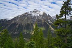 Franchere Peak (Bernie Emmons) Tags: jaspernationalpark francherepeak mountain clouds tree canada snow green brown travel explore