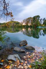 Parc de la Tête d'or, Lyon (Laetitia.p_lyon) Tags: fujifilmxt2 lyon parcdelatêtedor lac lake