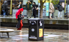 Eight Minutes Later ...... (Fermat 48) Tags: stpeterssquare manchester mobilephone ted umbrella tramtracks wet rain reflection canon eos 7dmarkii