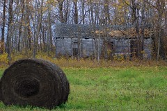 Old homestead, Manitoba, Canada (Miguelski Photography) Tags: haybale rural abandoned homestead prairie farming rustic autumn canada weathered derelict decay hay bale