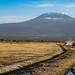 Majestic Kilimanjaro