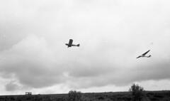 img723 (foundin_a_attic) Tags: garan piper supercub cub pa18 glider sailplane gliding aircarft