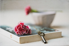 Everyday is a new beginning (Chapter2 Studio) Tags: stilllife book key soft sonya7ii red flower classic texture cup moody peaceful books calm minimal chapter2studio