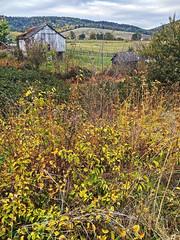 Autumn Reimagined (karl.wolfgang (Appalachian Son)) Tags: virginia landscape autumn rural farm bible christianity