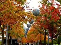 Photo of Autumn
