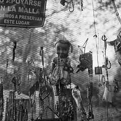 Monumento popular a Omayra Sánchez (RoryO'Bryen) Tags: omayrasánchez armero 1985 colombia colombie roryobryen copyrightroryobryen rolleiflex rolleiflex28d muerte death shrine popular popularculture viajeporelríomagdalena magdalenariver kodaktrix tolima