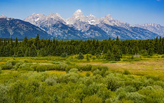 Grand Teton National Park (ValeTer_) Tags: mountainous landforms mountain natural landscape nature wilderness range environment grassland meadow vegetation nikon d7500 grand teton national park usa wy wyoming nps nikond7500 grandteton grandtetonnationalpark nationalpark