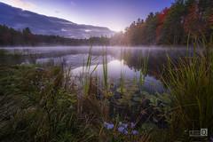 Autumn time. (JoseQ.) Tags: led lago agua niebla nh newhampshire cielo paisaje nenufar flores
