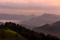 before the sunrise (iwona.kilichowska) Tags: sunrise hills sunlight mist trees landscape scenery nature scene outside slovenia countryside mountains clouds